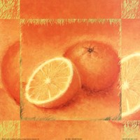 "Orange Delight by Diane Broadley - 10"" x 10"""