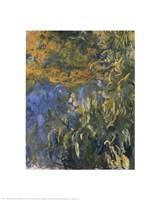 "Iris-1917 by Claude Monet, 1917 - 16"" x 20"""