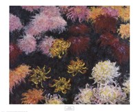 "Chrysanthemum, 1897 by Claude Monet, 1897 - 33"" x 27"""