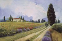 Holiday in Tuscany Fine Art Print