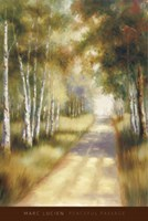 Peaceful Passage Fine Art Print
