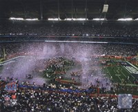 University of Phoenix Stadium SuperBowl XLII 2007 #20 Fine Art Print