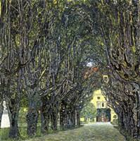 Avenue of Trees in the Park at Schloss Kammer, c.1912 Fine Art Print