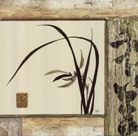 "Floral Essence IV by Chris Paschke - 12"" x 12"""