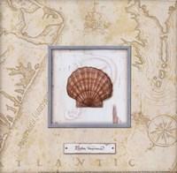 Sea Treasure II - mini Framed Print