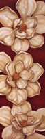 Bella Grande Magnolias
