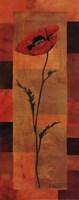 """Goa Poppy Panel II by Paul Brent - 8"""" x 20"""""""