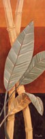 """Bali Leaves I by Paul Brent - 12"""" x 36"""", FulcrumGallery.com brand"""