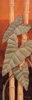 Bali Leaves II Framed Print