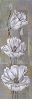 "Florentine Tulips by Paul Brent - 12"" x 36"" - $16.99"