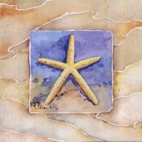 "Starfish by Paul Brent - 12"" x 12"", FulcrumGallery.com brand"