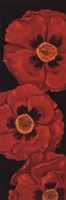 "12"" x 36"" Poppies Art"