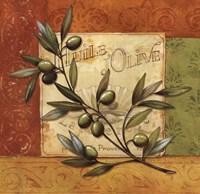 Olives du Midi I Framed Print