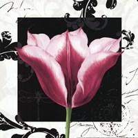 Damask Tulip III Fine Art Print