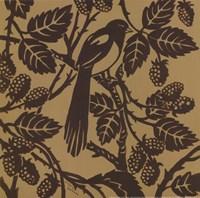 Bird Song IV Framed Print