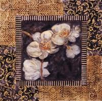 """Javanese Orchid I by Carolyn Holman - 12"""" x 12"""""""