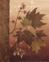 Maple Leaves - mini Fine Art Print