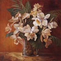 """Tropic Beauty II by Jillian Jeffrey - 27"""" x 27"""" - $21.99"""