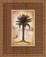 "South Palm I by Andrea Laliberte - 16"" x 20"""
