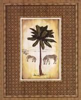 South Palm III Framed Print
