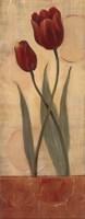"Circular Balance I - petite by Lucia Marque - 4"" x 10"""
