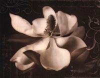"Garden Journal I by Amy Melious - 14"" x 11"""