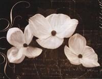 Garden Love Letter I Framed Print