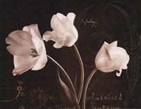 Garden Love Letter II Fine Art Print