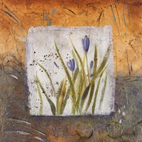 """12"""" x 12"""" Blue Tulip Pictures"""