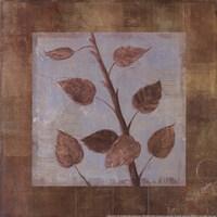 "Birch - mini - CS by Cheryl Martin - 12"" x 12"", FulcrumGallery.com brand"