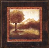 "Timeless Light I by Susan Osborne - 20"" x 20"""