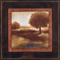 "Timeless Light II by Susan Osborne - 20"" x 20"""