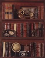 """Librairie III by Pela - 22"""" x 28"""""""