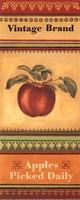 Apples Picked Daily - petite Fine Art Print