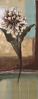 "Floral Splendor II by Selina Werbelow - 8"" x 20"""