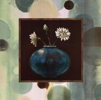 "Daisies I by Selina Werbelow - 20"" x 20"""
