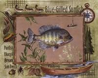 Blue-Gilled Sunfish Framed Print