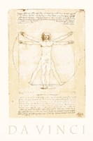 The Vitruvian Man Fine Art Print