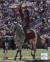 Florida State University - Chief Osceola the Seminoles Mascot, 2006 Fine Art Print