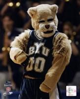 "Brigham Young University Mascot, 2001 by Daphne Brissonnet, 2001 - 8"" x 10"""