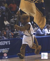 University of Pittsburgh -  Panthers Mascot, 2004 Fine Art Print