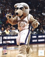 "University of Washington - Huskies Mascot, 2004 by Daphne Brissonnet, 2004 - 8"" x 10"", FulcrumGallery.com brand"