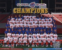 The New York Giants 2007 team photo (#83) Fine Art Print