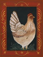"12"" x 16"" Chicken Pictures"