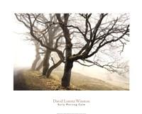 "Early Morning Calm by David Lorenz Winston - 30"" x 24"""