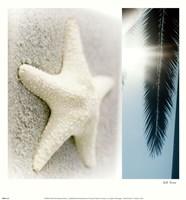 "Oceans II by Jennifer Broussard - 13"" x 14"""