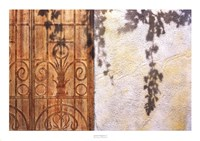 Rusty Door and Grapevine Fine Art Print