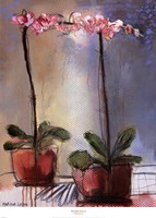 """Orchid and Lace I by Marina Louw - 18"""" x 26"""" - $18.49"""