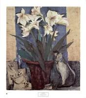 Amaryllis & Cat Fine Art Print