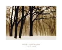 """Past Dreams by David Lorenz Winston - 30"""" x 24"""""""